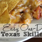 One Dish Meal: Texas Skillet