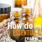How do Essential Oils Really Work?